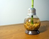 Repurposed Mini Lightbulb Vase