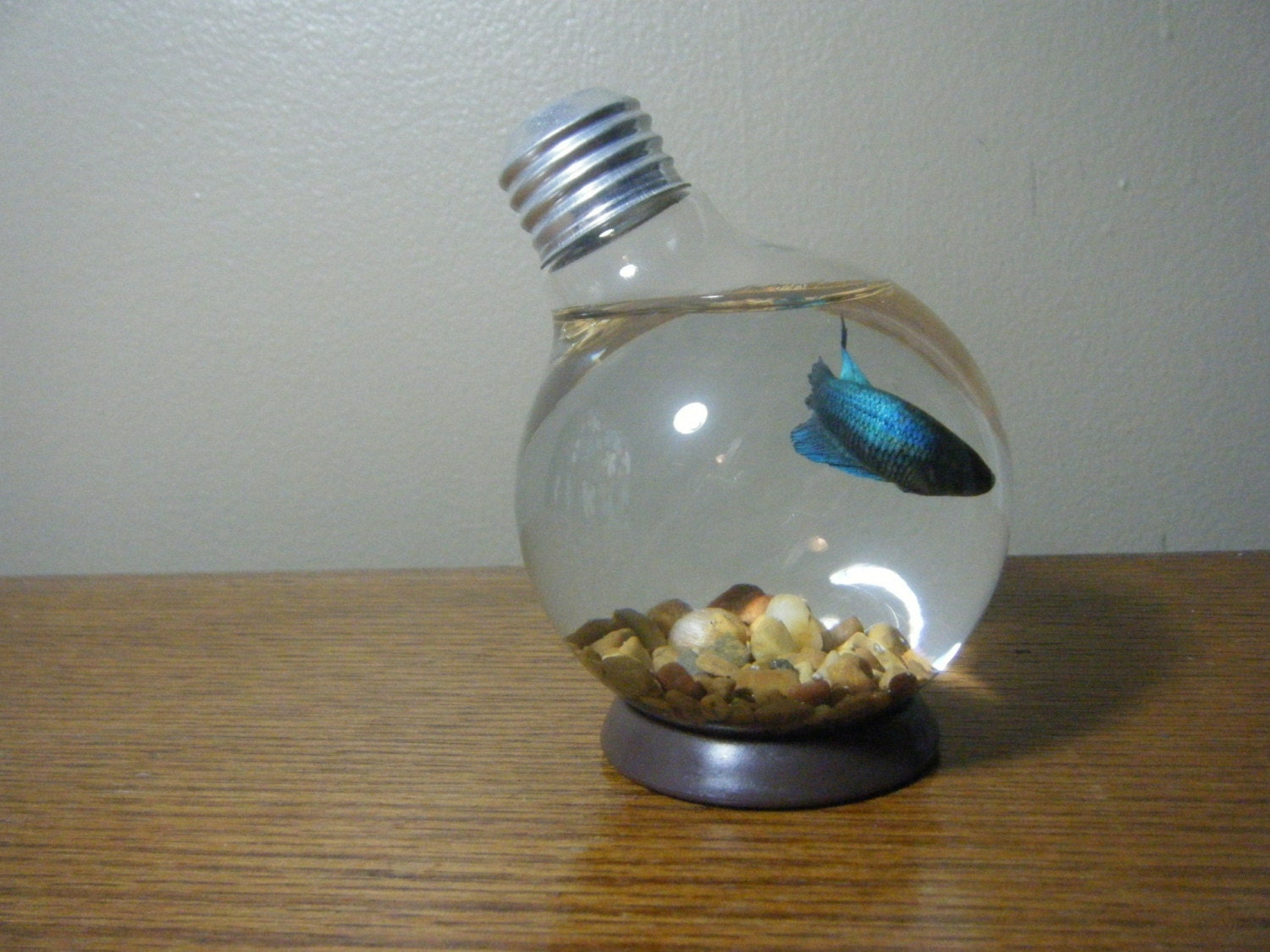 repurposed round lightbulb fishbowl or vase