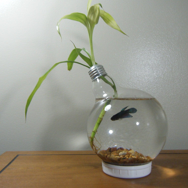 Large lightbulb fishbowl for yomrag for Betta fish light