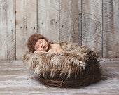 The Nest: Newborn HAT photo prop