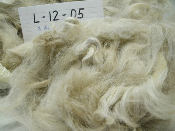 Llama Fiber Raw Whole Fleece L 12 05