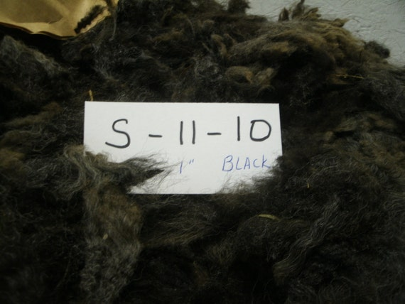 Border Leicester Romney Cross Raw Whole Fleece Sheep Fiber S 11 10
