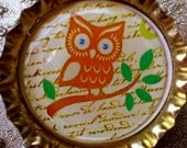 CLEARANCE-Retro Brown Owl on a Branch bottle cap magnet