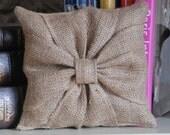 Cutest ring bearer pillow