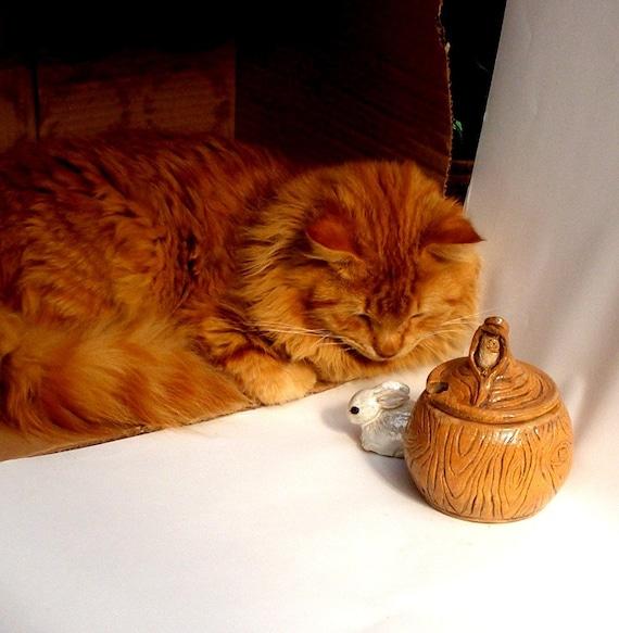 SALE A  trunk jar with owl  for sugar