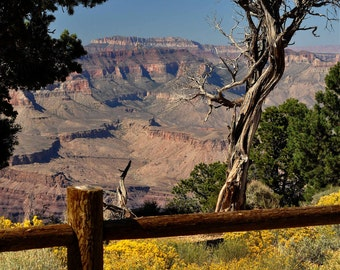 Fine Art Print, Grand Canyon National Park, Arizona