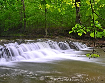 Fine Art Print, Fall Creek Gorge Nature Preserve, Indiana (IDSPD130)