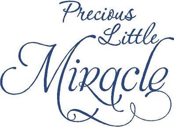 Precious Little Miracle 22x16 Vinyl Wall Decal Sticker Art