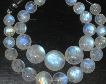 AAA - Gorgeous Nice Quality Rainbow Moonstone Smooth Polished Coin Shape Briolett Huge size 9 - 13 mm approx 15pcs