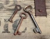 Rustic Keys - Antique Primitive Skeleton Keys - Set of 3 - Rustic Vintage