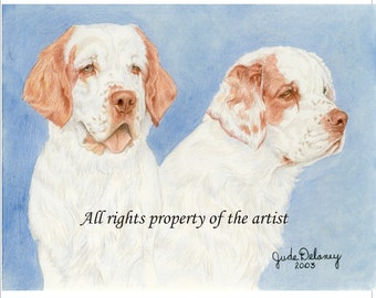 "Clumber Spaniels Reproduction Mini Print ""Homer and Lucy""  by Jude Delaney"