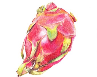 Dragonfruit, Print