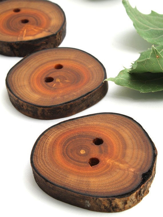 Rustic Natural Wood Buttons (Set of 4) - Made from Invasive Species Buckthorn Tree . Sustainable Wisconsin Wood