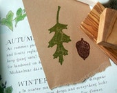 From Little Acorns Do Big Oaks Grow 2 Piece Olive Wood Stamp Set