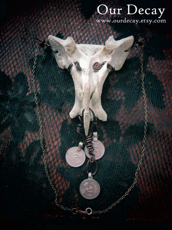 SALE - Hamasa - sacrum bone necklace with kuchi coins bone jewelry