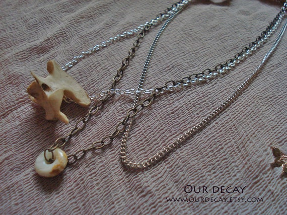 Custom listing for Amy - necklace with cat vertebra, and coyote earrings with crystal bullets
