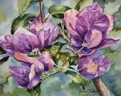 Bougainvillea, purple, Watercolor print, ACEO, 739 Tropical, Florida, watercolorsNmore