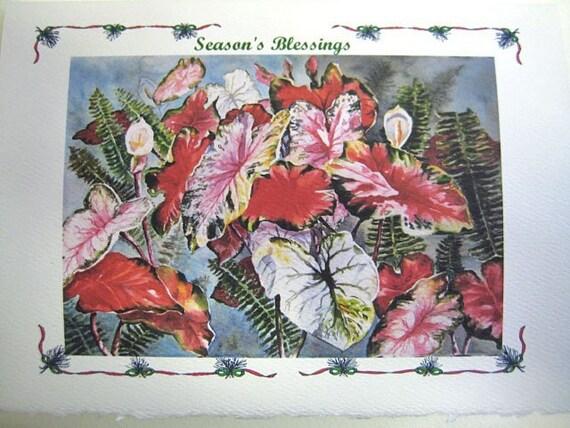 Caladium - Christmas - Note Card - 5 x 7 - Blank - Christmas card - Season's Blessings - Custom title - Caladiums, Red - green