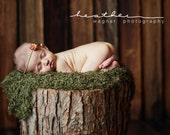 moss mini-blanket / wrap - as seen in Professional Photographers Magazine - newborn photography prop