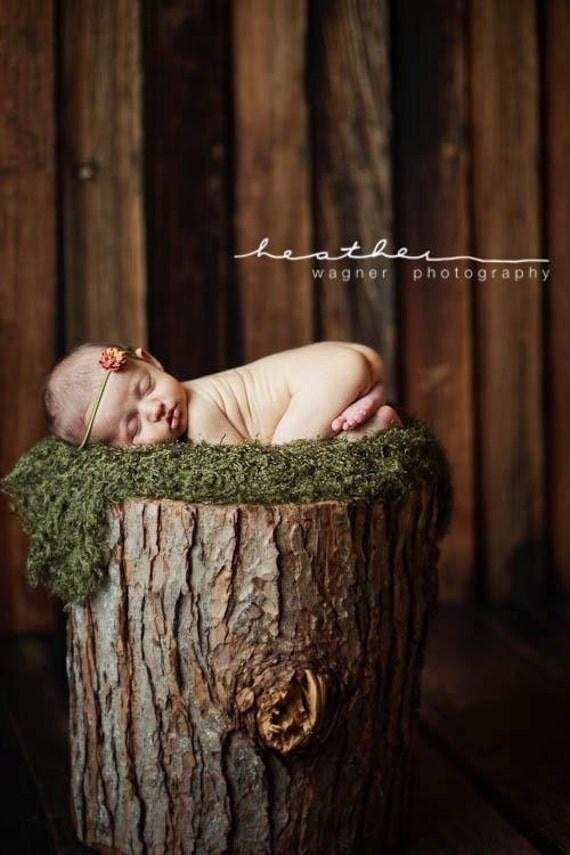 moss mini-blanket / wrap - as seen in Professional Photographers Magazine - newborn photography prop