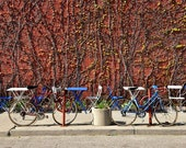 Print of Urban Cafe Red and Blue Bike Photography