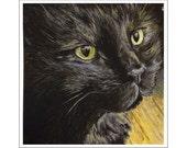 Sheila the Cat print of an original painting