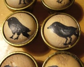Hand Painted Vintage Door Knobs - Pulls - Raven