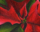 Original ACEO Floral Painting - ATC Art Red and Green Poinsettia Christmas in July