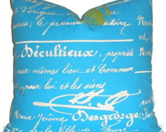 """French Script Turquoise Decorative Pillow Cover. 20"""" X 20"""""""