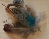 feather and twig hair clip