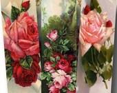 Vintage Rose Digital Collage Sheet SALE!!! Victorian Postcard, Romantic Floral Digital Download Vintage Microscope Slide #1 INSTANT Download