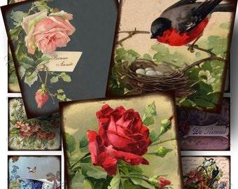 Birds and Flowers Digital Collage Sheet SALE!!! Victorian Floral Postcard Digital Download - Vintage Aged 2 Inch Square #1 INSTANT Download