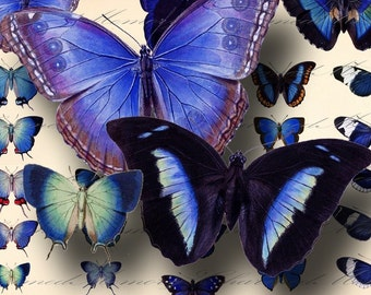 Blue Butterfly Digital Collage Sheet ON SALE!!! - Digital Download Vintage Encyclopedia Insects For Fairy Wings - Printable INSTANT Download