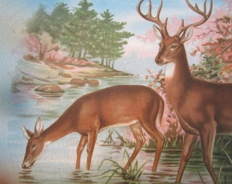 Vintage China Transferware Charger Plate Deer Rustic Nature