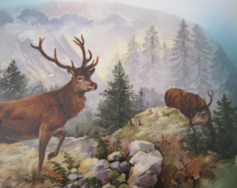 Vintage China Transferware Charger Plate Deer Elk Bucks Serving Platter Wall Hanging
