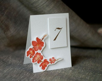 Blossom Table Number Tents - for Events, Weddings, Parties, Showers, Graduations.