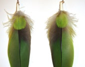 Amazonian Parrot Green Natural Feather Earrings
