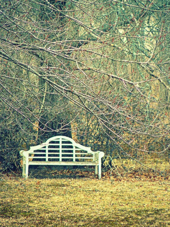 Winter Bench - 11x14 Color Photograph, Wall Decor, Nature, Wall Art, Fine Art