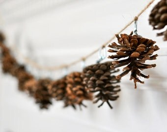 Still Life Photography, Pine Cone Photograph, Swag, Minimal, White, Brown, Pinecone Photo, Holiday Decor, Winter Home, Christmas