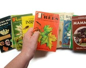 Mini Notebooks- Repurposed Vintage Field Guide Book Covers- Notebook Paper Blank Books- No. 6 Seashores- Last One