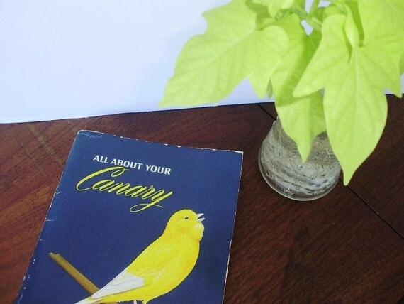 1950's Pet Canary Owners Manual