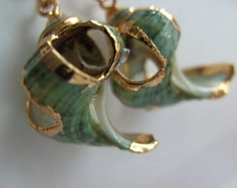 Gorgeous, Shell Earrings, teal, sea green, gold, by NewellsJewels on etsy