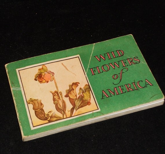 SALE Vintage Pocket Size Wild Flowers of America Guide Book, Illustrated, 1922