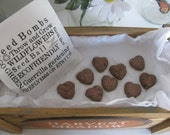 5 HEART SHAPED Clay seed bombs- butterfly and hummingbird wildflower mix