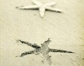 Beach Photography Starfish Sand Print Charleston Black and White 8x8 Print