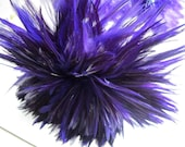 "Three inch strip REGAL Strung Rooster Saddles Feathers (individual feather about 3.5-4"")"