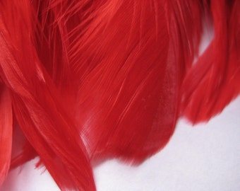 "Rooster Schlappen FEATHERS - Strung Dyed Saddles RED (2"" strip -40 pieces of 4.5-5.5"" long feathers)"