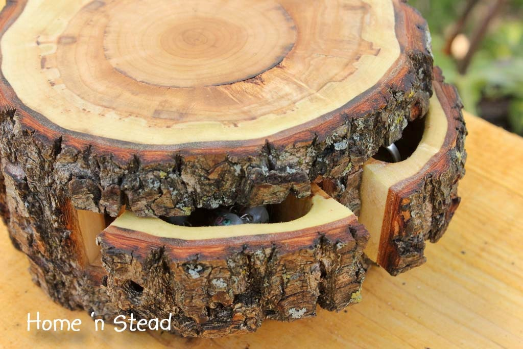Storage Stump Rustic Log Jewelry Box Natural Puzzle Box