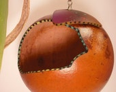 Gourd Bird Feeder/Bird House Contemporary and Organic