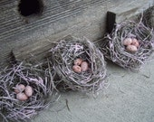 Bird Nest Shabby Chic Pink Frosting Handmade Nest with Handmade Speckled Eggs - Set of 6